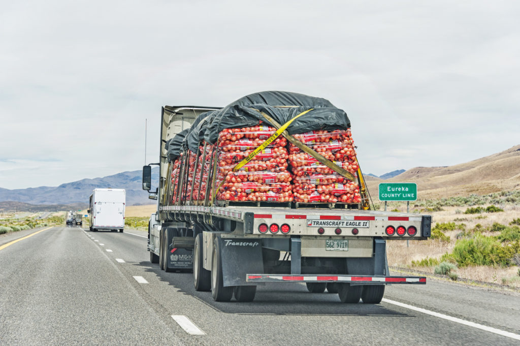 Trucking Forecasts in 2019 - Carrying Produce